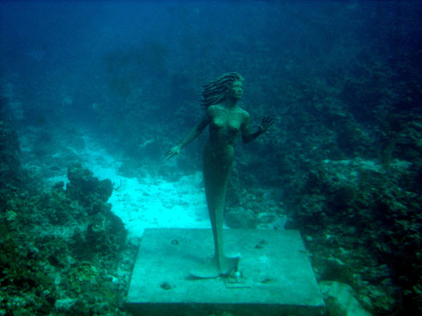 Bronze Cayman Mermaid